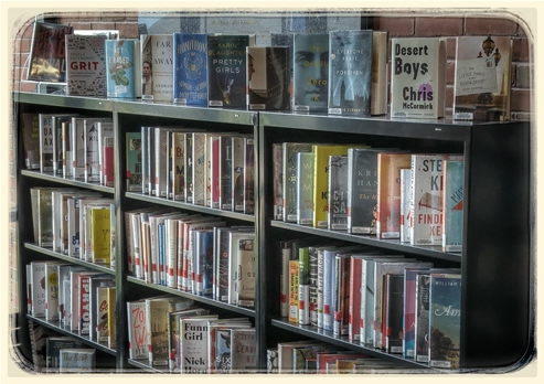 popular fiction and nonfiction books