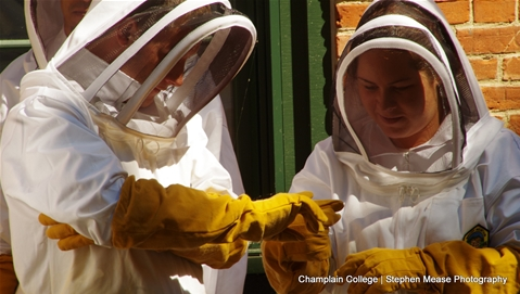 Champlain Summer Core Students in the Apiary