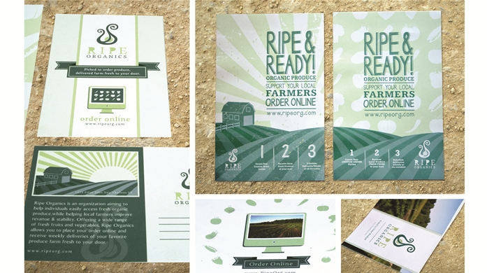Ripe Organics, brand development by Champlain Graphic Design student, Ariana